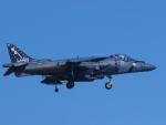 なまくら はげるさんが、厚木飛行場で撮影したアメリカ海兵隊 AV-8B(R) Harrier II+の航空フォト(写真)