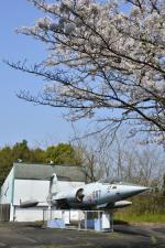 Gambardierさんが、岡山空港で撮影した航空自衛隊 F-104J Starfighterの航空フォト(写真)