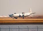 OMAさんが、岩国空港で撮影した海上自衛隊 UP-3Dの航空フォト(飛行機 写真・画像)