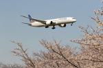 こだま467号さんが、成田国際空港で撮影したユナイテッド航空 787-9の航空フォト(写真)