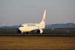 ばっきーさんが、宮崎空港で撮影した日本航空 737-846の航空フォト(写真)