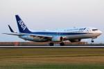 ばっきーさんが、宮崎空港で撮影した全日空 737-881の航空フォト(写真)