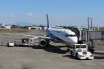 ばっきーさんが、宮崎空港で撮影した全日空 A320-211の航空フォト(写真)