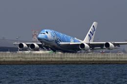 simokさんが、関西国際空港で撮影した全日空 A380-841の航空フォト(写真)