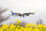 Flychappyさんが、成田国際空港で撮影した全日空 777-381/ERの航空フォト(飛行機 写真・画像)