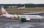 M.Ochiaiさんが、宮崎空港で撮影した日本航空 737-846の航空フォト(写真)