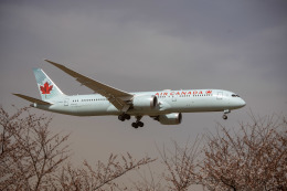 チャッピー・シミズさんが、成田国際空港で撮影したエア・カナダ 787-9の航空フォト(飛行機 写真・画像)