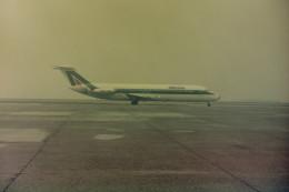 ヒロリンさんが、ヴェネツィア マルコ・ポーロ国際空港で撮影したアリタリア航空 DC-9-32の航空フォト(飛行機 写真・画像)
