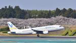 パンダさんが、成田国際空港で撮影したバニラエア A320-216の航空フォト(写真)