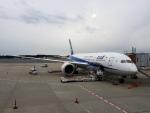MRJさんが、成田国際空港で撮影した全日空 787-8 Dreamlinerの航空フォト(写真)