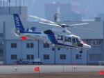 ここはどこ?さんが、札幌飛行場で撮影したオールニッポンヘリコプター AS365N3 Dauphin 2の航空フォト(写真)