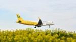 flytaka78さんが、成田国際空港で撮影したバニラエア A320-214の航空フォト(写真)