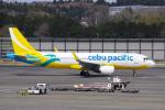 yabyanさんが、成田国際空港で撮影したセブパシフィック航空 A320-214の航空フォト(飛行機 写真・画像)
