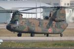 DONKEYさんが、新田原基地で撮影した陸上自衛隊 CH-47JAの航空フォト(写真)