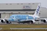 miyapppさんが、成田国際空港で撮影した全日空 A380-841の航空フォト(飛行機 写真・画像)