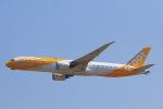 スカイチームKMJ なぁちゃんさんが、成田国際空港で撮影したスクート 787-9の航空フォト(写真)