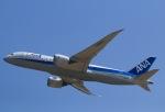 スカイチームKMJ なぁちゃんさんが、成田国際空港で撮影した全日空 787-8 Dreamlinerの航空フォト(写真)