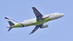 パンダさんが、成田国際空港で撮影したエアプサン A320-232の航空フォト(写真)