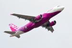 Co-pilootjeさんが、成田国際空港で撮影したピーチ A320-214の航空フォト(写真)