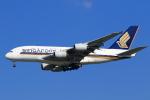★azusa★さんが、シンガポール・チャンギ国際空港で撮影したシンガポール航空 A380-841の航空フォト(写真)