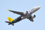 Co-pilootjeさんが、成田国際空港で撮影したロイヤルブルネイ航空 A320-251Nの航空フォト(写真)