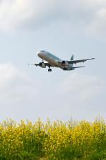 Co-pilootjeさんが、成田国際空港で撮影したエアソウル A321-231の航空フォト(写真)