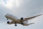 Co-pilootjeさんが、成田国際空港で撮影した日本航空 787-9の航空フォト(写真)