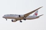 Co-pilootjeさんが、成田国際空港で撮影した日本航空 787-8 Dreamlinerの航空フォト(写真)