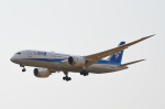 Co-pilootjeさんが、成田国際空港で撮影した全日空 787-8 Dreamlinerの航空フォト(写真)