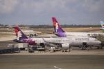 パピヨンさんが、ダニエル・K・イノウエ国際空港で撮影したハワイアン航空 A321-271Nの航空フォト(写真)