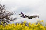 Flychappyさんが、成田国際空港で撮影したタイ国際航空 A380-841の航空フォト(飛行機 写真・画像)
