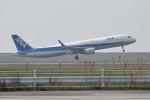 mamemashinさんが、佐賀空港で撮影した全日空 A321-211の航空フォト(写真)