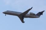 Liangさんが、デトロイト・メトロポリタン・ウェイン・カウンティ空港で撮影したユナイテッド・エクスプレス CL-600-2B19 Regional Jet CRJ-200ERの航空フォト(飛行機 写真・画像)