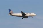 Liangさんが、デトロイト・メトロポリタン・ウェイン・カウンティ空港で撮影したユナイテッド航空 A319-132の航空フォト(飛行機 写真・画像)