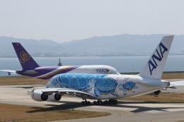 ガス屋のヨッシーさんが、関西国際空港で撮影した全日空 A380-841の航空フォト(写真)