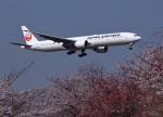 garrettさんが、成田国際空港で撮影した日本航空 777-346/ERの航空フォト(写真)