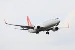 武彩航空公司(むさいえあ)さんが、アタテュルク国際空港で撮影したターキッシュ・エアラインズ 737-8F2の航空フォト(飛行機 写真・画像)
