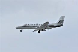kumagorouさんが、那覇空港で撮影した朝日新聞社 560 Citation Encoreの航空フォト(写真)