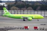 yabyanさんが、成田国際空港で撮影したS7航空 A320-214の航空フォト(飛行機 写真・画像)
