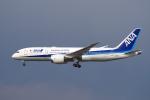 yabyanさんが、成田国際空港で撮影した全日空 787-8 Dreamlinerの航空フォト(写真)