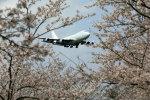 take_2014さんが、成田国際空港で撮影したアトラス航空 747-4KZF/SCDの航空フォト(写真)