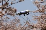 take_2014さんが、成田国際空港で撮影した全日空 767-381/ERの航空フォト(写真)