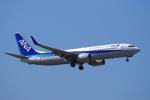 yabyanさんが、成田国際空港で撮影した全日空 737-881の航空フォト(写真)