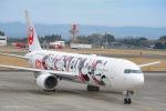 ⚓ほそっち⚓さんが、鹿児島空港で撮影した日本航空 767-346/ERの航空フォト(写真)
