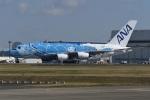 tassさんが、成田国際空港で撮影した全日空 A380-841の航空フォト(写真)