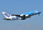 じーく。さんが、成田国際空港で撮影した全日空 A380-841の航空フォト(飛行機 写真・画像)