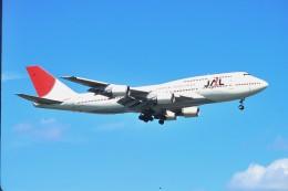 デデゴンさんが、新千歳空港で撮影した日本航空 747-446Dの航空フォト(飛行機 写真・画像)