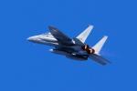 あずち88さんが、岐阜基地で撮影した航空自衛隊 F-15DJ Eagleの航空フォト(写真)