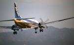 LEVEL789さんが、旧高松空港で撮影した全日空 YS-11A-213の航空フォト(写真)