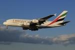 SIさんが、成田国際空港で撮影したエミレーツ航空 A380-861の航空フォト(写真)
